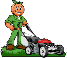 Gwinnett Lawns Lawn Care