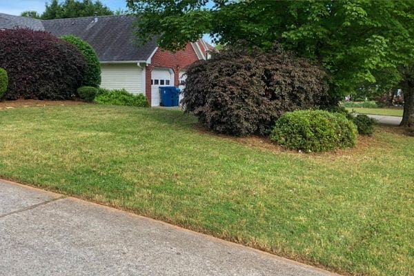 Lawn and landscape that is professionally maintained.